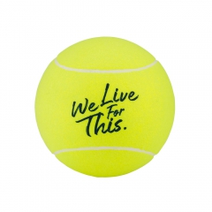 Babolat Midsize Ball Roland Garros - Yellow