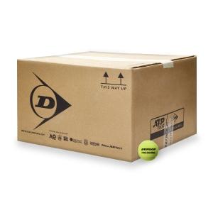 Pelotas Tenis Dunlop Dunlop Training  Saco 60 Pelotas 605034