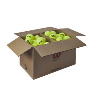 Pelotas Tenis Wilson Wilson Triniti Club Caja de 72 Pelotas WR8201501
